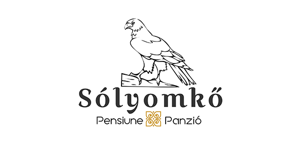 Pensiunea şi Vila Sólyomkő